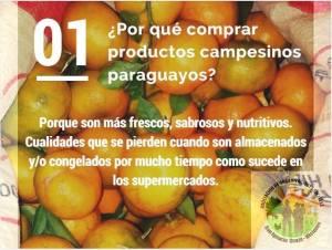 feria agroecologia1